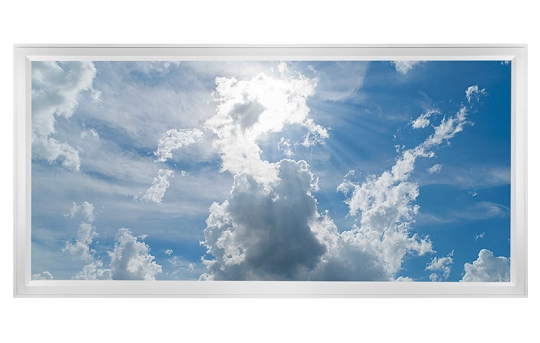 LED Skylight w/ Sun Beams Skylens® - 2x4 Dimmable LED Panel Light - Flush Mount/Drop Ceiling - EGD-C1-x24