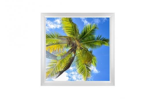 LED Skylight w/ Palm Trees Skylens® - 2x2 Dimmable LED Panel Light - Flush Mount/Drop Ceiling - EGD-T2-x22