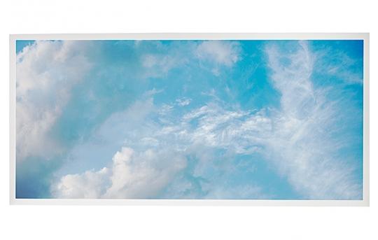 LED Skylight w/ Summer Skylens® - 2x4 Dimmable LED Panel Light - Drop Ceiling - EGD3-C5-x24-50