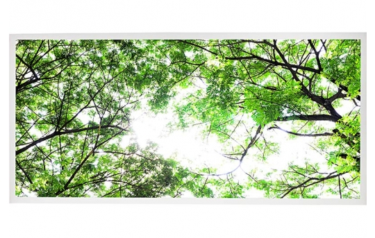 LED Skylight w/ Forest Boughs Skylens® - 2x4 Dimmable LED Panel Light - Drop Ceiling - EGD3-T1-x24-50