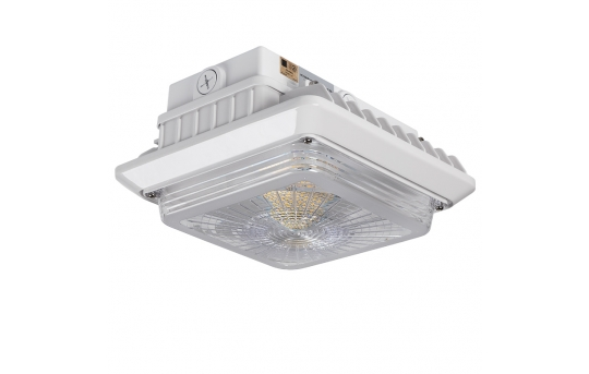 LED Canopy Lights - Dimmable - 5000K - Surface Mount or Conduit Install - 55W (175W MH Equivalent) - 6,600 Lumens - LPG-50K55P