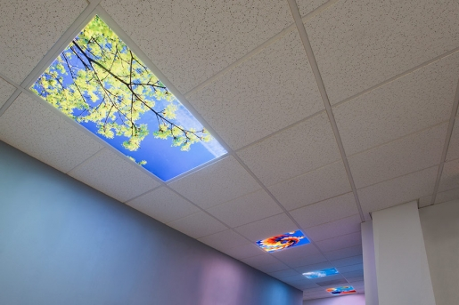 Multi LED Skylight Display - Custom Image and Configuration - 2x4 Dimmable LED Panel Lights w/ SkyLenses® - Drop Ceiling Recessed Mount - EGD2-CP-x24C-72