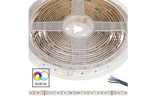 5050 RGB+W LED Strip Light - Color-Changing LED Tape Light w/ White and Multicolor LEDs - 24V - IP20 - 204 lm/ft - STN-ExK80-A10A-12B5M-24V