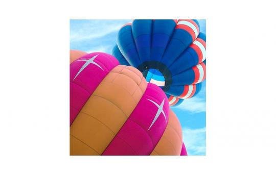 Skylens® Fluorescent Light Diffuser - Balloon 1 Decorative Light Cover - 2' x 2' - TRD-B1-22