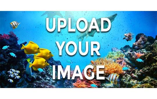 Custom Printed Skylens® Fluorescent Light Diffuser - Decorative Light Cover - 2' x 4' - TRD-CP-24