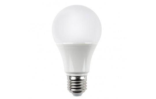 A19 LED Globe Bulb - 60 Watt Equivalent - 840 Lumens - A19-x14