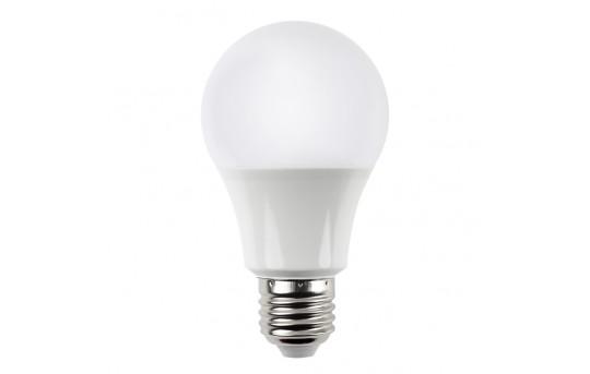 A19 LED Bulb - 60 Watt Equivalent - 12V DC - 820 Lumens - A19-x10-12V