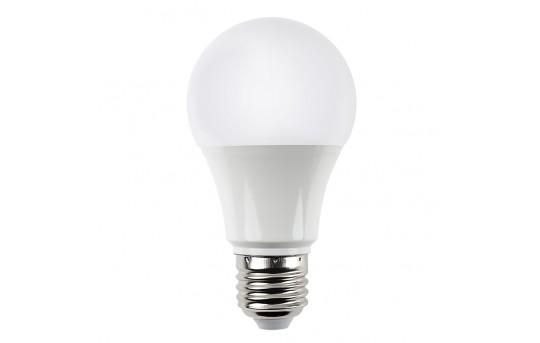 A19 LED Bulb - 60 Watt Equivalent Globe Bulb - 625 Lumens - A19-x12