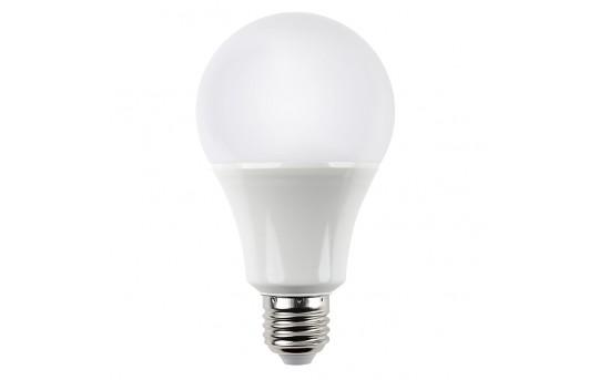 A21 LED Bulb - 60 Watt Equivalent - 24 VDC - 800 Lumens - A21-x9-24V