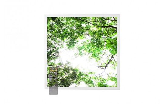 Tunable White LED Skylight w/ Forest Boughs SkyLens® - 2x2 Dimmable LED Panel Light - Drop Ceiling - EGD-T1-VCT22