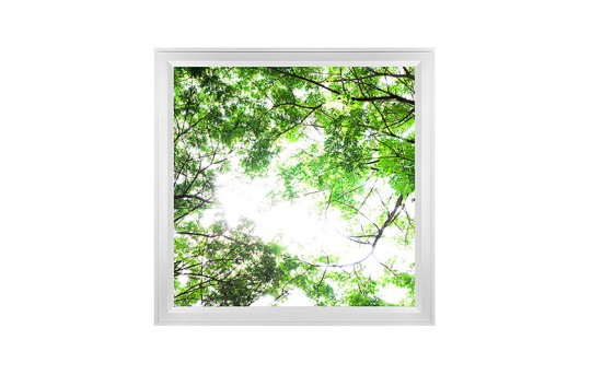 LED Skylight w/ Forest Boughs Skylens® - 2x2 Dimmable LED Panel Light - Flush Mount/Drop Ceiling - EGD-T1-x22