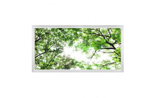 LED Skylight w/ Forest Boughs Skylens® - 2x4 Dimmable LED Panel Light - Flush Mount/Drop Ceiling - EGD-T1-x24