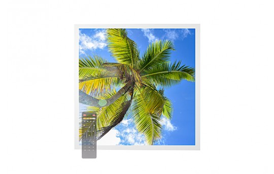 Tunable White LED Skylight w/ Palm Trees SkyLens® - 2x2 Dimmable LED Panel Light - Drop Ceiling - EGD-T2-VCT22