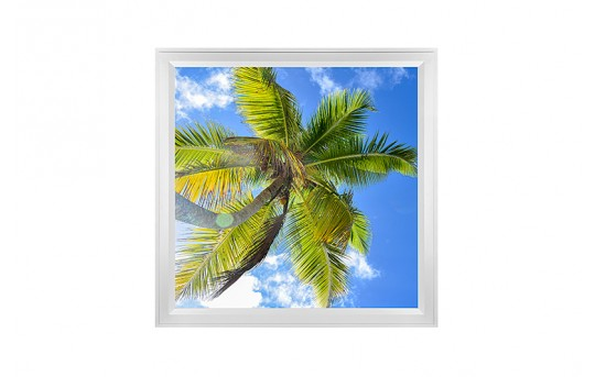 LED Skylight w/ Palm Trees Skylens® - 2x2 Dimmable LED Panel Light - Flush Mount/Drop Ceiling Recessed Mount - EGD-T2-x22