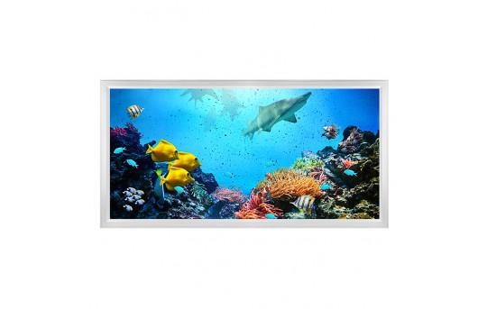 LED Skylight w/ Ocean Life Skylens® - 2x4 Dimmable LED Panel Light - Flush Mount/Drop Ceiling - EGD-W1-x24