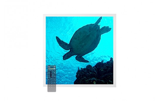 Tunable White LED Skylight w/ Sea Turtle SkyLens® - 2x2 - Dimmable - Drop Ceiling Recessed Mount - EGD-W2-VCT22
