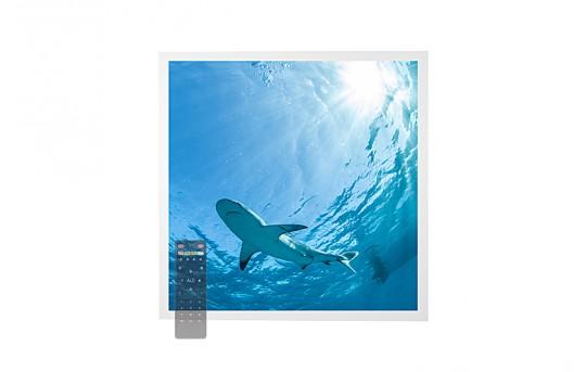 Tunable White LED Skylight w/ Lone Shark SkyLens® - 2x2 - Dimmable - Drop Ceiling - EGD-W3-VCT22