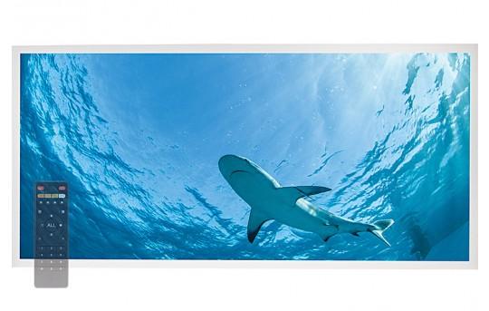 Tunable White LED Skylight w/ Lone Shark SkyLens® - 2x4 - Dimmable - Drop Ceiling - EGD-W3-VCT24