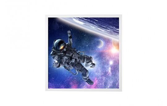 LED Skylight w/ Astronaut SkyLens® - 2x2 - Dimmable - Drop Ceiling - EGD2-S1-x22