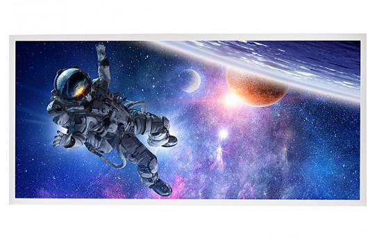 LED Skylight w/ Astronaut Skylens® - 2x4 - Dimmable - Drop Ceiling - EGD2-S1-x24
