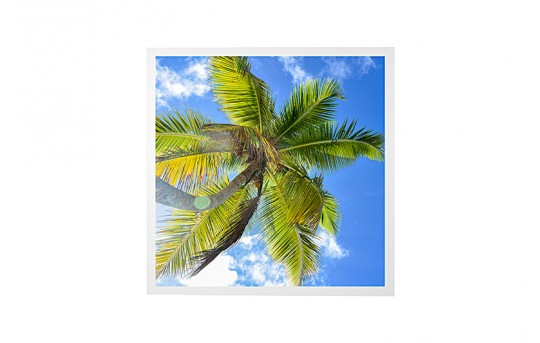 LED Skylight w/ Palm Trees Skylens® - 2x2 Dimmable LED Panel Light - Drop Ceiling Recessed Mount - EGD2-T2-x22