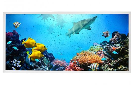 LED Skylight w/ Ocean Life Skylens® - 2x4 Dimmable LED Panel Light - Drop Ceiling - EGD2-W1-x24