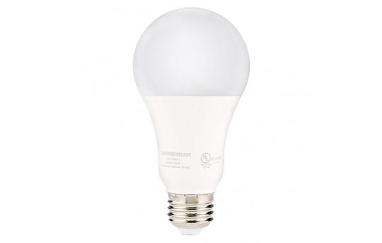 A21 LED Bulb - 120 Watt Equivalent Globe Bulb - Dimmable - 1,200 Lumens - Fits Most A19 Applications - A21D-x12