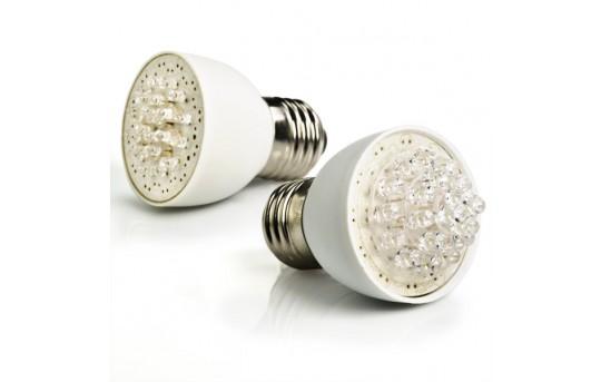 12V PAR16 LED Bulb, 24 LED - E27-W24-x