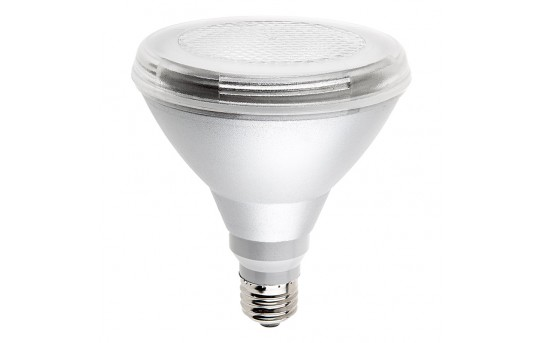 PAR38 LED Bulb, 15W Sharp LED, Weatherproof - PAR38IP-x15-25