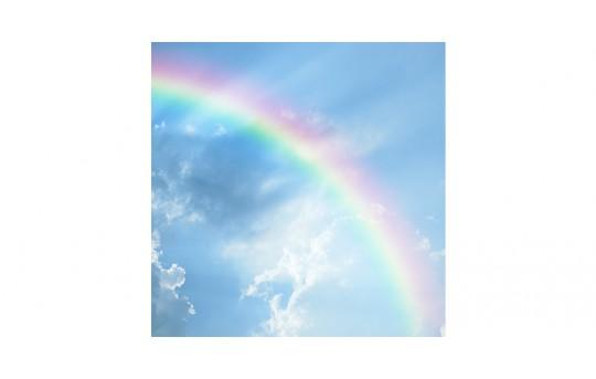 Skylens® Fluorescent Light Diffuser - Rainbow Decorative Light Cover - 2' x 2' - TRD-C7-22