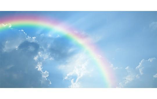 Skylens® Fluorescent Light Diffuser - Rainbow Decorative Light Cover - 2' x 4' - TRD-C7-24