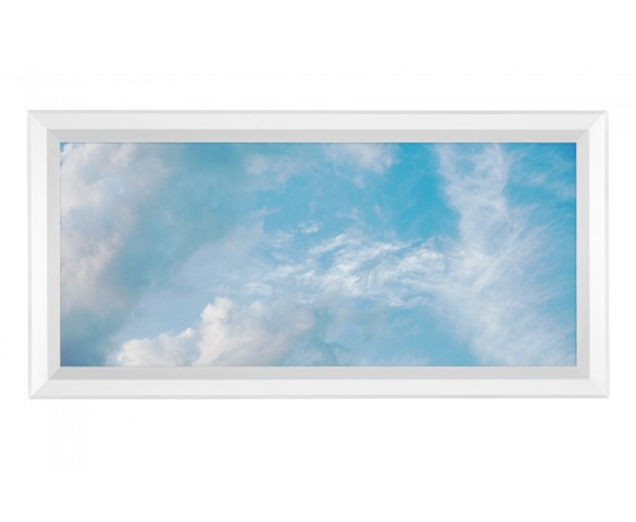 LED Skylight - 1x2 Dimmable Even-Glow® LED Panel Light - Summer Sky - Flush Mount