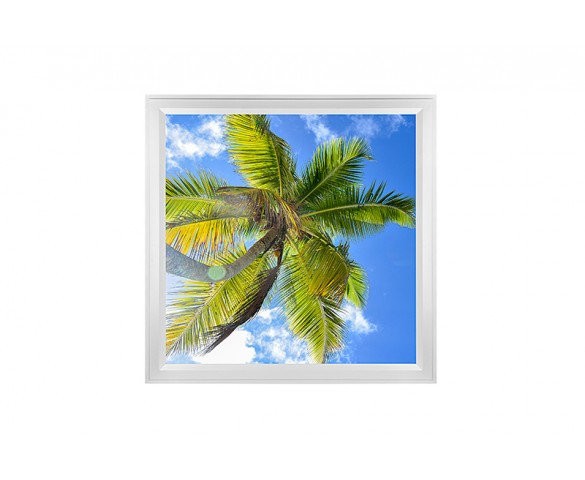 LED Skylight w/ Palm Trees Skylens® - 2x2 Dimmable LED Panel Light - Flush Mount/Drop Ceiling Recessed Mount