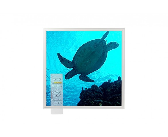 Tunable White LED Skylight w/ Sea Turtle Skylens® Diffuser - 2x2 Dimmable LED Panel Light - Drop Ceiling