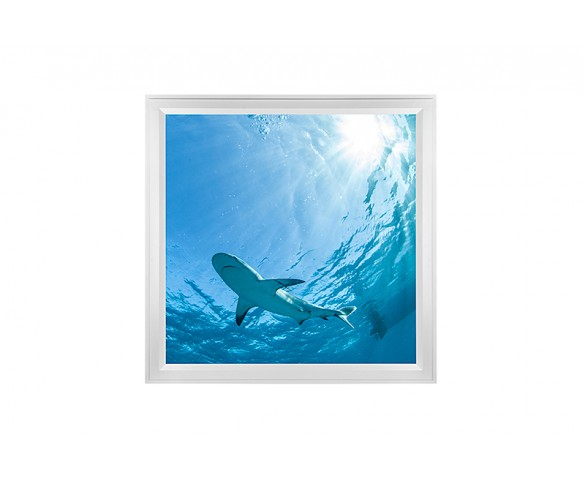 LED Skylight w/ Lone Shark Skylens® - 2x2 - Dimmable - Flush Mount/Drop Ceiling Recessed Mount