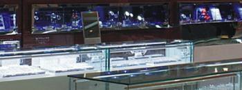 Retail Shelf & Display Case