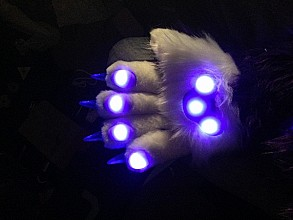 mascot suit with LEDs