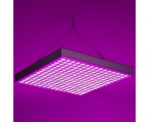 30W LED Grow Light - 2-Band Red/Blue for Indoor Plant Growth