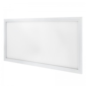 Dimmable 36W LED Panel Light Fixture - 1ft x 2ft