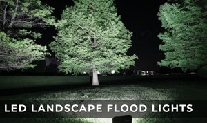 LED Landscape Flood Lights