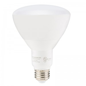 15 Watt Dimmable LED Flood Light Bulb