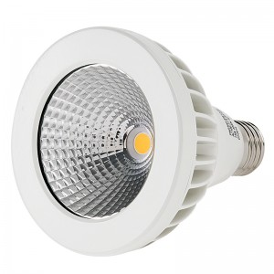 LED Dimmable PAR Bulbs