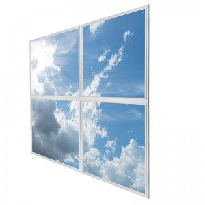 Multi-Panel LUXART® Skylight