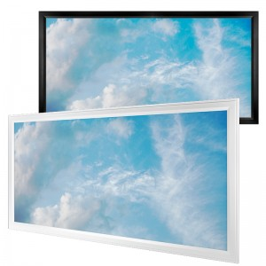 Skylight LED Panels